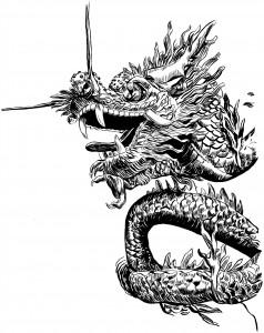 """""""Dragon"""" by Adam Wallenta"""