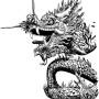 Dragon by Adam Wallenta.