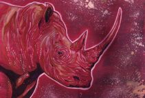 Red Rhino Commission. By Adam Wallenta. Pen and Ink on Paper with Acrylics.